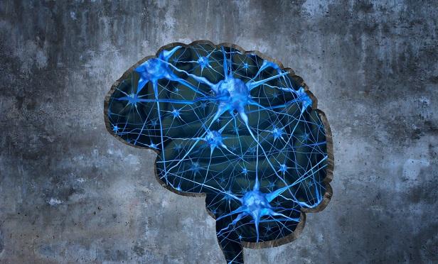 Stock illustration of a brain.