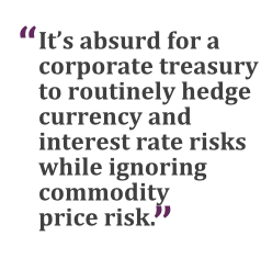 """""""It's absurd for a corporate treasury to routinely hedge currency and interest rate risks while ignoring commodity price risk."""""""