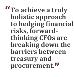 """""""To achieve a truly holistic approach to hedging financial risks, forward-thinking CFOs are breaking down the barriers between treasury and procurement."""""""