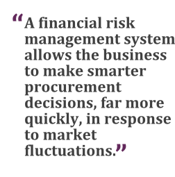 """""""A financial risk management system allows the business to make smarter decisions, far more quickly, in response to market fluctuations."""""""