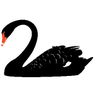 3 Potential 'Black Swans' to Watch For