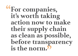 """""""For companies, it's worth taking action now to make their supply chain as clean as possible, before transparency is the norm."""""""